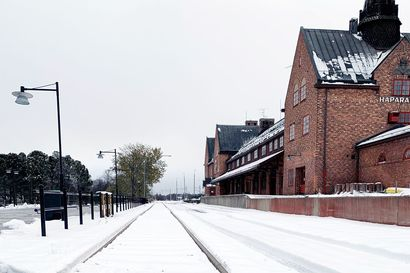 Ruotsin ja Suomen erottaa 20 kilometrin puuttuva pätkä junarataa – uusi yhdistys pyrkii tuomaan yhteistyötahot yhteen ja kuromaan kuilun umpeen