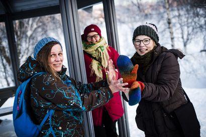 Irene Tikka sai Vuoden Lapasen nukketeatterin edistämisestä Lapissa