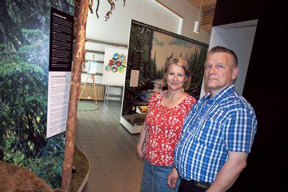 Savukoskella ryhdytään laskemaan matkailijoita – Korvatunturin opastuskeskus on avannut ovensa pitkän väännön jälkeen