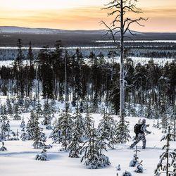 Metsomies vie myyttisen linnun jäljille – katso upeat kuvat talvijahdista, josta tuli totta ensi kertaa 55 vuoteen