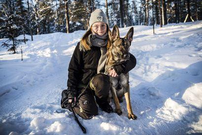 Teija kiittää koiraansa elämästään, Villelle koira on parisuhteen pelastaja – Kuusi lappilaista kertoo, miten karvainen ystävä voi muuttaa elämän