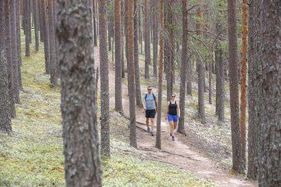 Rokuan retkeilyreittejä uudistetaan – tavoitteena retkeilijöiden ja luonnon etu