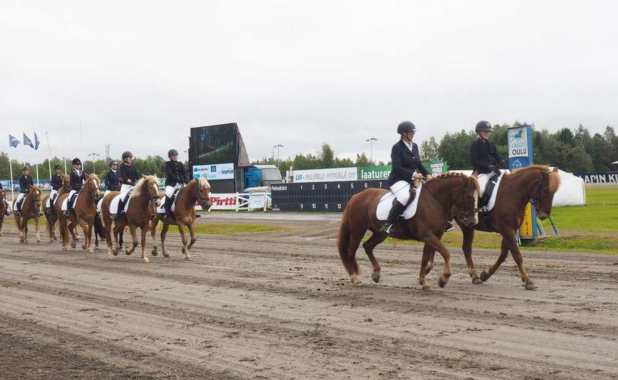 Suomenhevoskatrilli Ookkonää hevostellu 2017 tapahtumassa.