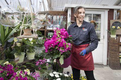 Miljoona ruusua äidille, vai jotain ihan muuta: äitienpäiväkukissa on nyt paljon vaihtoehtoja