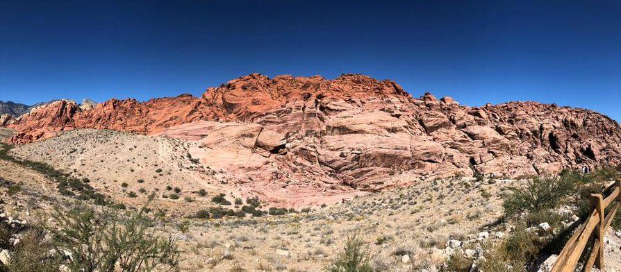 Las Vegasin läheltä löytyvä Red Rock Canyon on näkemisen arvoinen.