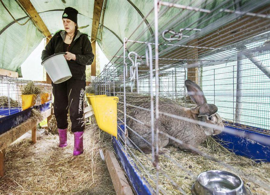 Van der Vegtin yrittäjäpariskunta tekee tiivistä yhteistyötä paikallisten tuottajien ja eläinlääkäreiden kanssa. Siuruan Kanila on mukana esimerkiksi paikallisessa REKO-lähiruokarenkaassa. – Verkoston rakentamisessa on ollut kova työ, sillä kaikki on pitänyt tehdä itse, Christa Van der Vegt kuvailee.