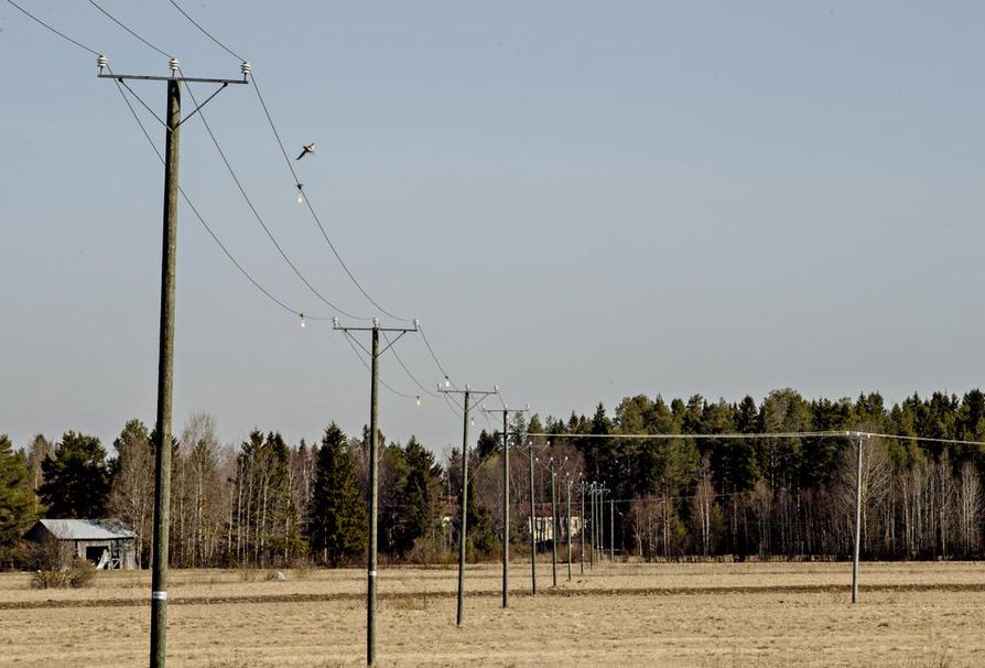 Sähköjohdoista riippuvat pienet välkkyvät liput ovat hyvä keino ehkäistä lintujen törmäilyä johtoihin. Kuvan linja halkoo peltoaukeaa Kempeleessä.