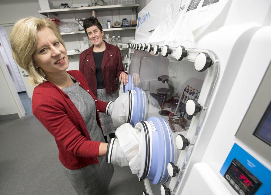 """""""Kun on hapenpuute, tietyt geenit aktivoituvat"""", kertovat professorit Johanna Myllyharju (oik.) ja Peppi Karppinen."""
