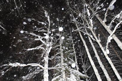 Talvi vihdoin myös Etelä-Lappiin? –torstaina sataa lunta ja viikonloppuna pakkanen voi kiristyä 15 asteeseen