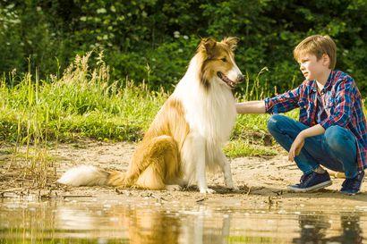 Arvio: Kaikkien koiraelokuvien äiti palaa pitkän tauon jälkeen valkokankaalle saksalaisena versiona