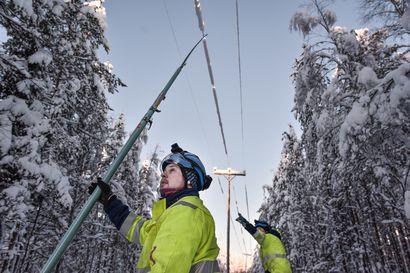 """""""Normaalitilaan voi mennä vielä päiviä"""" – Sähkölinjoille taipunut kymmeniä puita, joita raivataan pois"""