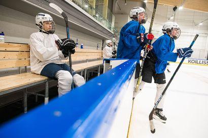 Neljä kuukauden pelitauko päättyy vihdoin – PaKan U15-jääkiekkojoukkue on harjoitellut ahkerasti, sunnuntaina joukkue suuntaa Ouluun Kärppien vieraaksi