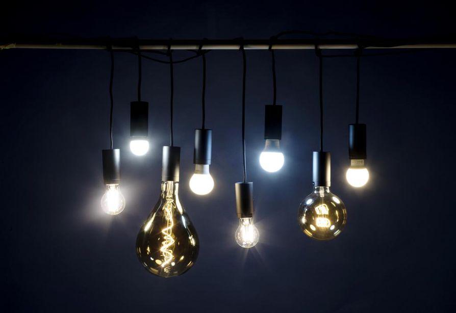 Valitse lamppu värin, tehon, koon, hinnan tai käyttötarkoituksen mukaan. Kuvassa Pirkan 7 watin filamenttilamppu, Airamin 5,5 watin mainoslamppu, Northlightin himmennettävä 5 watin filamenttilamppu, Philipsin 5,5 watin led-lamppu, Bilteman 4,4 watin kirkas filamenttilamppu, Airamin 8,5 watin päivänvalolamppu, Northlightin 0,6 watin filamenttilamppu ja Ikean 6 watin lamppu. Hinnat vaihtelevat 1,99 eurosta 12,99 euroon. Muiden valaisuaika on 15 000 tuntia, päivänvalolampulle luvataan 25 000 tuntia.