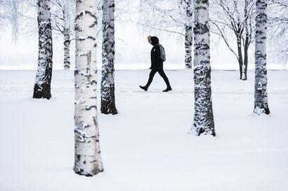 Viikko alkaa poutaisessa pakkassäässä – Oulun seudulle on odotettavissa hieman tavanomaista kylmempää säätä ja heikkoa lumisadetta