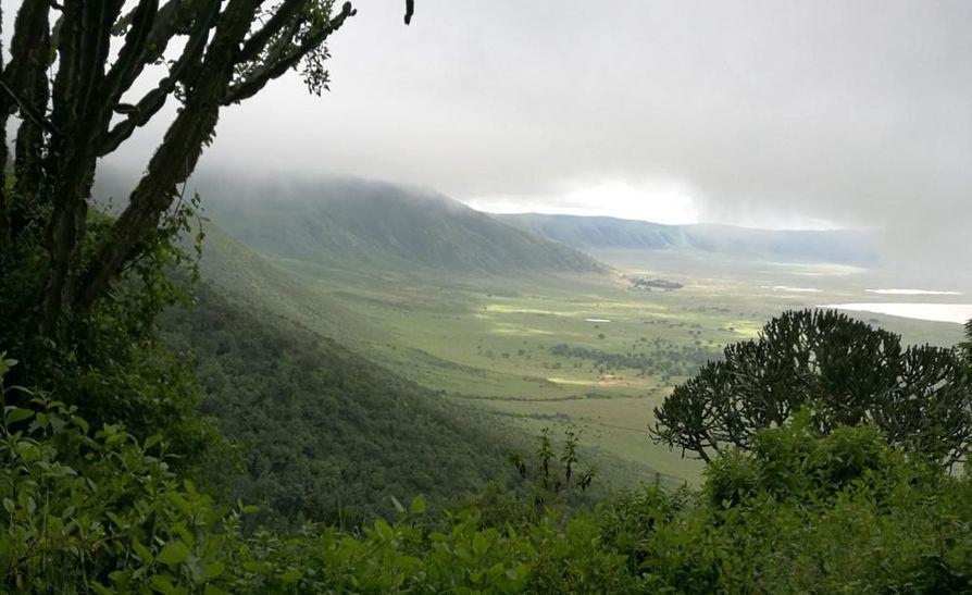 Näkymä Ngorongoron kansallispuistoon.