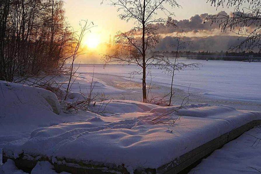 Lumisateita ei ensi viikolla Oulun seudulla juuri nähdä.