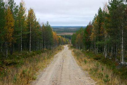 """Metsähallituksen metsäteille ei tule puomeja – """"Niiden sulkeminen joidenkin törttöilyn takia olisi kohtuutonta"""""""