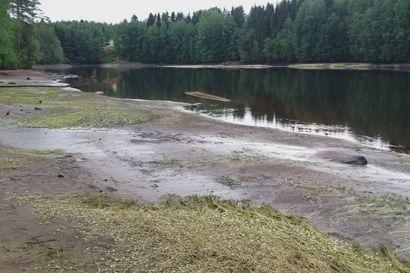 Oulujoen pintaa laskettiin kaksi metriä Vaalan ja Utajärven välillä – lukija kuvasi oudoksi paljastuneita rantoja