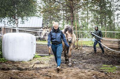 Suvi Mähönen, 21, muutti Lappiin, löysi puolison ja perusti yrityksen pikkukylään keskellä koronaa – Nyt hänellä on tuhansia seuraajia sosiaalisessa mediassa ja takana orivarsan aiheuttama somemyrsky
