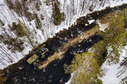 Metsäkone ryömi koskeen ja molskautti sinne kaksi rekkakuormallista soraa kalastusta harrastavien suomalaisten laskuun – jos hyvin käy, 2030-luvulla Kielikönkäässä voi hypätä useampikiloinen taimen