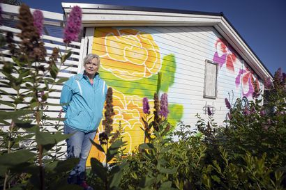 Oululainen Marja Karjala maalautti mökkinsä seinään perhosia ja kukkia, joita ohikulkijat ihastelevat – viranomaiset sen sijaan jyrähtivät ja nyt teos pitää poistaa