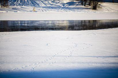 Hiihtäjä putosi jäihin Rovaniemellä, pääsi omin avuin ylös avannosta