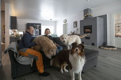 Siikajoen kunnanjohtaja asui perheineen vuokralla, kunnes pääsi muuttamaan hirsitaloon Ruukkiin joen rantaan – pitkään yhdessä suunniteltu koti tuoksuu vielä uudelta puulta