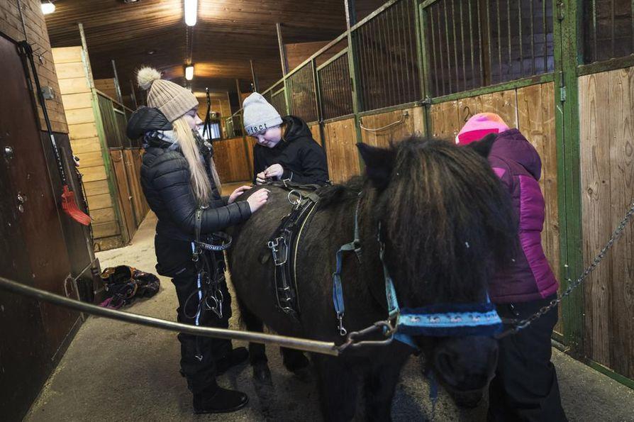 Ella Korteniemi opastaa Vilma Riekkiä, 11, ja Saara Järvelää, 8, Homecorner's Breeze -ponin valmistelussa radalle. 20-vuotias Horsku on jo ponien eläkeiässä.