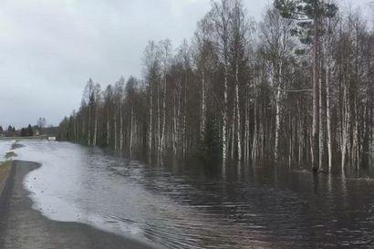Tornionjoki tulvii valtatie 21 molemmin puolin 22.5. Ylitornion ja Aavasaksan välillä. Pyörätie suljettu iltapäivällä. Normaali jokiuoma on muutaman sadan metrien päässä.