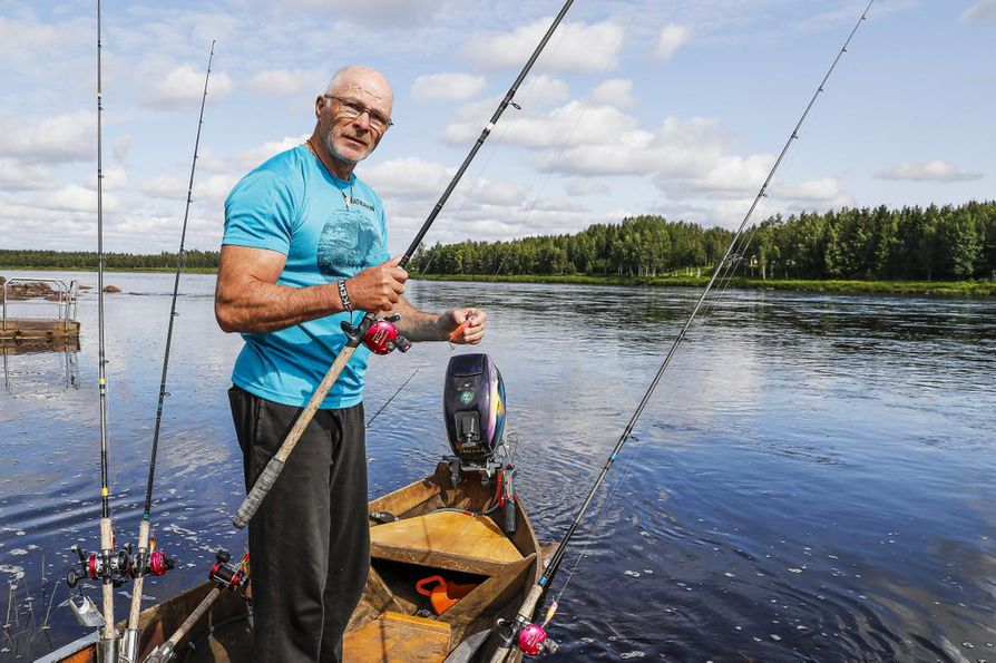 Harri Matikainen pyytää lohta Muoniossa. Matikaisen mukaan olosuhteet, kuten veden korkeus ja lämpötila, ovat optimaaliset lohenpyyntiin.