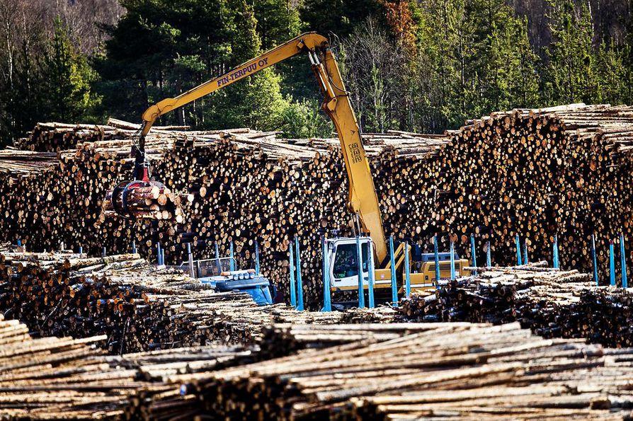 Suurin yksittäinen ryhmä puuaineksesta tehdyistä tuotteista ovat selluteollisuudessa syntyvät jäteliemet. Ne ovat muodostaneet neljänneksen kaikesta Suomessa käytetystä puusta koko 2000-luvun ajan.