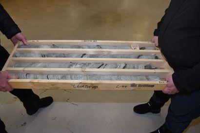 Latitude 66 Cobalt hakee lupia malminetsintään 96 neliökilometrin alueilla Itä-Lapissa
