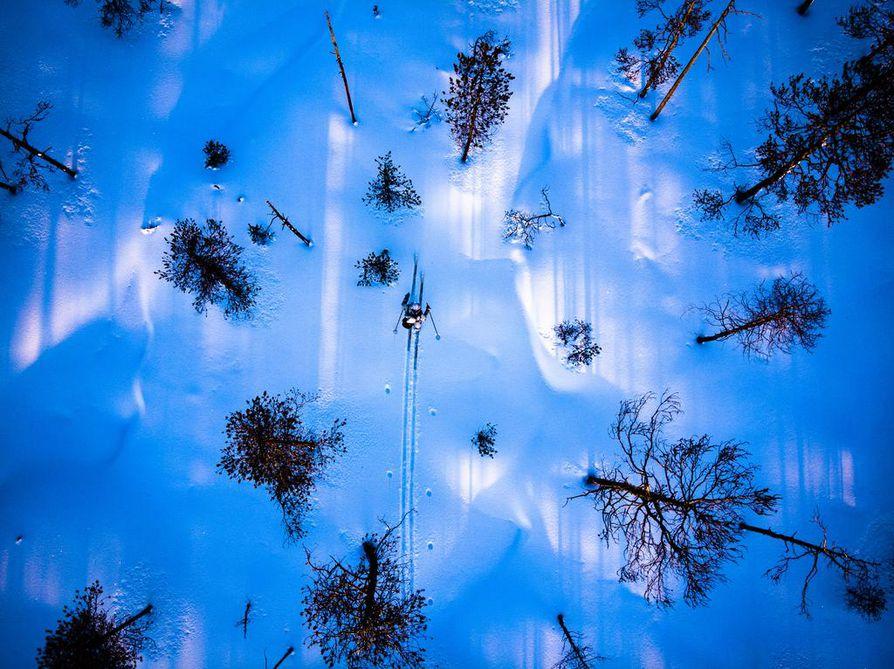Metso viihtyy sydäntalvella harvapuustoisilla rämeillä ja aavoilla. Siksi metsästäjäkin suuntaa sinne.