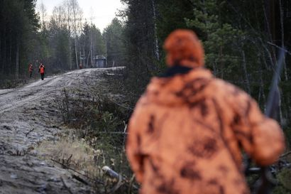 Hirvenpyyntiä käsitellään jo kunnanvaltuustoissakin – muualta tulevien metsästäjien määrä on kasvanut, Sallassa ampujaluetteloissa liki 900 ulkopaikkakuntalaista