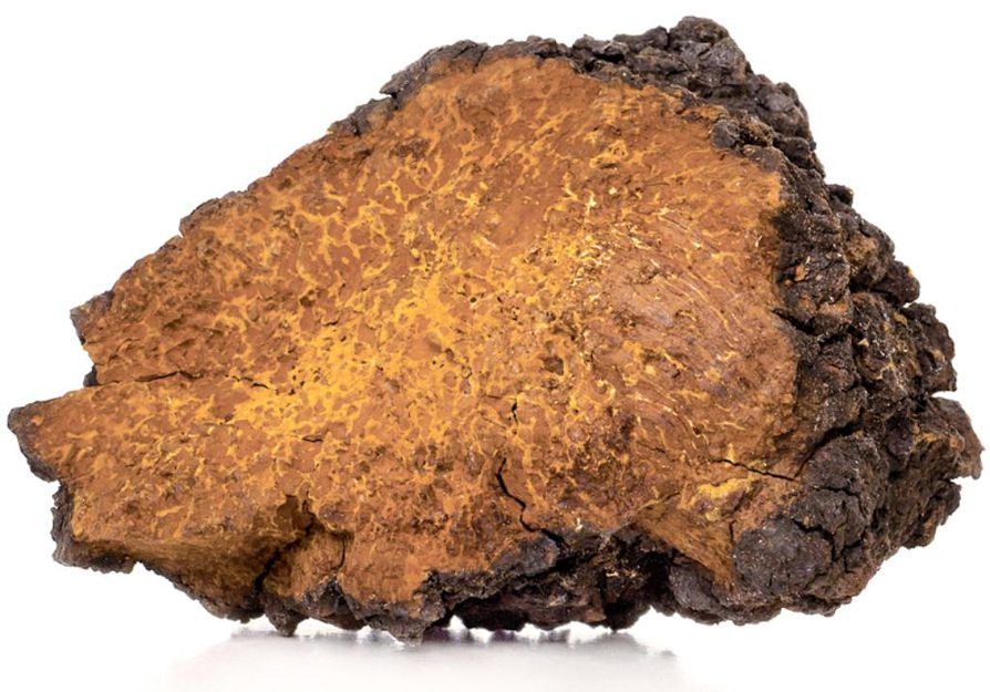 Suomessa kerääjät saavat tuoreesta pakurikäävästä 10–30 euroa kilolta ja kuivatusta 60–100 euroa.