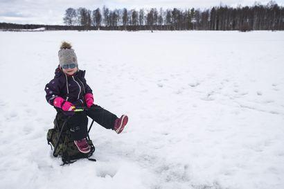 Sylvi, 3, nosti ensimmäisen kalansa Kuusamojärvestä – Pilkille mielii nyt moni, sillä jäällä riittää tilaa ilman ihmisjoukkoja