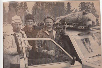 Karhunpyynnin historiaa: Kolarin karhu kiskottiin kyytiin kattotelineelle –Jahtiseurue ajoi takaa 170-kiloista uroskarhua päiväkausia pehmeässä keväthangessa