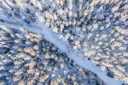 Sanginjoella retkeily jatkuu entiseen tapaan – Metsähallituksessa toivotaan rahoituksen vakiintumista tasolle, jossa korjausvelkaa ei enää synny