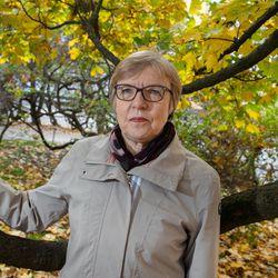 """""""Metsä on varma sijoitus"""" –metsäneuvos Marja Kokkonen vaatii Suomelta tarkkaavaisuutta, ettei kukaan muu pääse ohjailemaan metsäomaisuuttamme"""