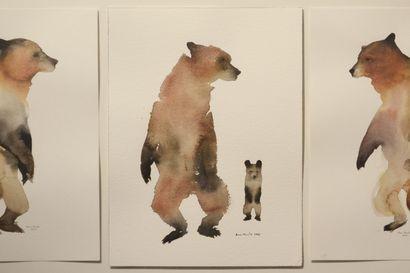 Arvostelu: Kettumaisia juttuja – Anni Kuulan akvarellit ovat kuin eläinkirjan kuvitusta