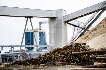 Kemin biotuotetehtaan valmistelevat työt jatkuvat – investointipäätös aikaisintaan syksyllä