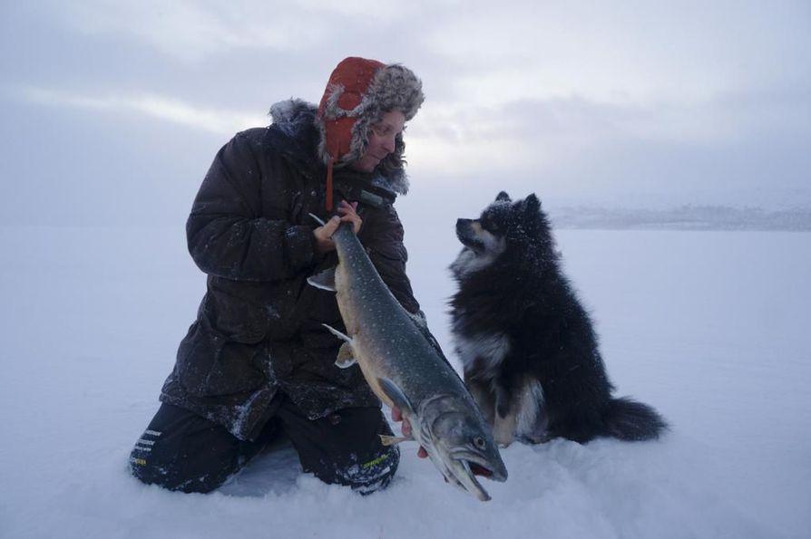Eränkävijät-sarja on tutustuttanut katsojat kilpisjärveläiseen kalastajaan Aki Huhtaseen ja suomenlapinkoira Äijään.