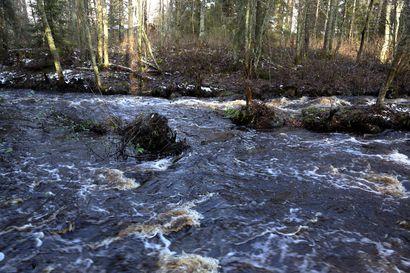 Raahessa tarkkaillaan Pattijoen tulvimista – pelastuslaitos kehottaa kiinteistön omistajia varautumaan tulvasuojauksien tekemiseen