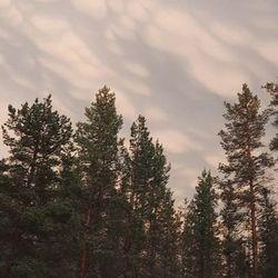 Kakslauttasessa 27.7. ukkosmyrskyn jälkeen erikoinen pilvimuodostelma.
