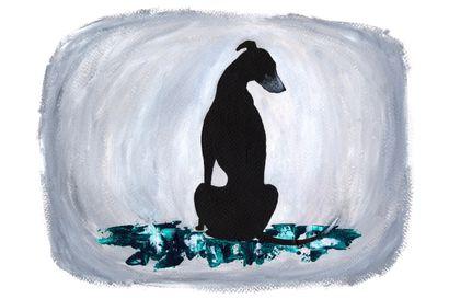 """Essee: Oli virhe paljastaa koiraryhmässä, että omat voimani eivät riittäisi kaikkein vaikeimpien adoptiokoirien kanssa: """"Koirista on tullut ihmisten hyvyyskilpailun väline"""""""