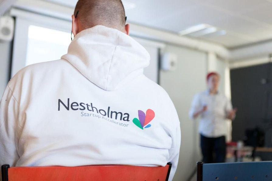 Nestholma