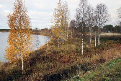 Sodankylä etsii investoijaa kylpylähotellille Jeesiönrantaan – kohdetta markkinoidaan sekä kotimaahan että ulkomaille