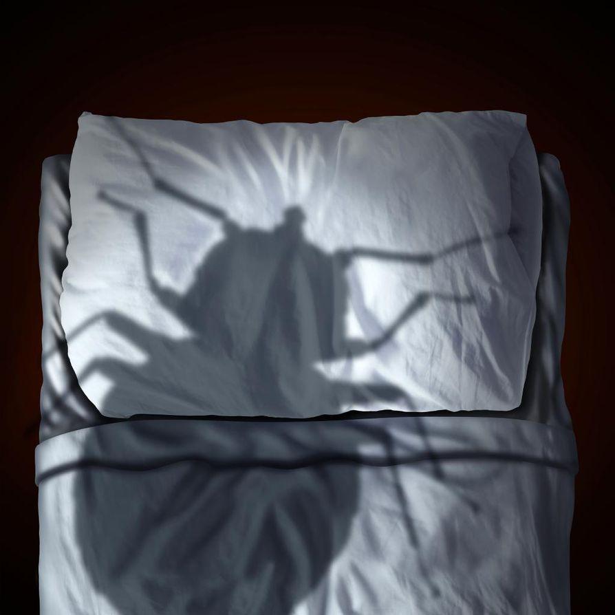Unihalvaukseen liittyy usein voimakas kokemus pahan läsnäolosta. Unesta havahtunut saa silmänsä auki, mutta ei voi liikuttaa raajojaan. Hengittäminen voi tuntua vaikealta ja hän saattaa nähdä hallusinaatioita kuten hämähäkkejä tai pelottavan tumman hahmon.