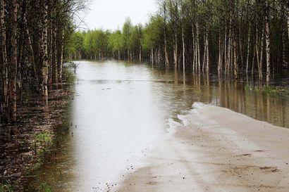 Ivalojoen tulva laskee – Tulvahuippu oli kymmenen senttimetrin päässä 2000 vuoden tulvasta
