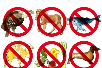 Yhdellä kulttuurialueella kielletty ruoka voi olla toisella alueella juhlaillallisen kohokohta